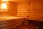 Huize Tergast, luxe vakantiehuis met sauna en eigen zwembad in Drenthe